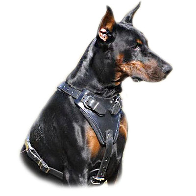 >Dog Harnesses Doberman