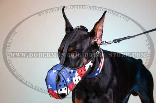 Hand Painted Leather Doberman Muzzle