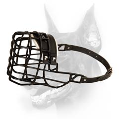 Fine winter wire muzzle for Doberman