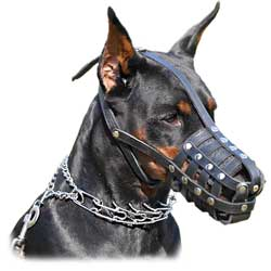 Multipurpose leather dog muzzle