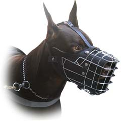 Muzzle with inside padding