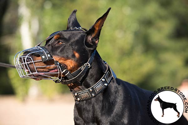 Doberman wire basket muzzle with rust-proof hardware for perfect control