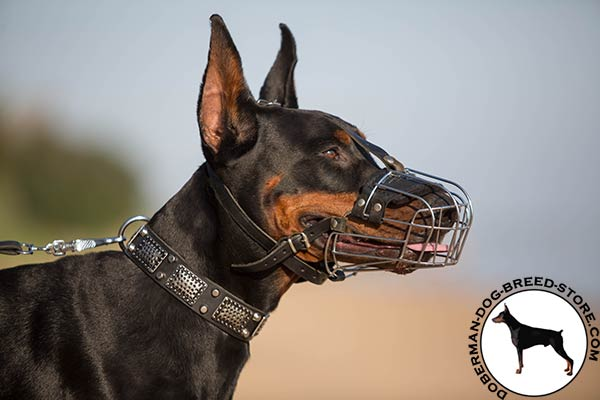 Doberman wire basket muzzle with rust-free fittings for better comfort