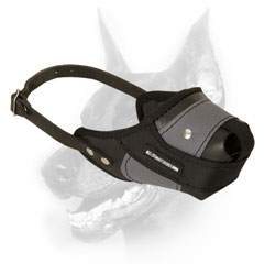Doberman muzzle made of nylon and leather offers extreme durability