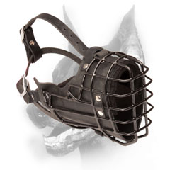 Wire Doberman muzzle padded from inside