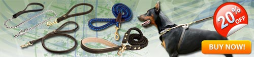 Heavy Duty Doberman Leashes/Leads Training Doberman