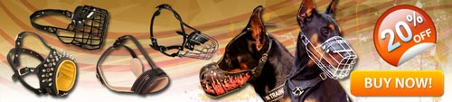 Get Today High Quality Exclusive Doberman Muzzles