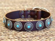 leather dog collar for Doberman