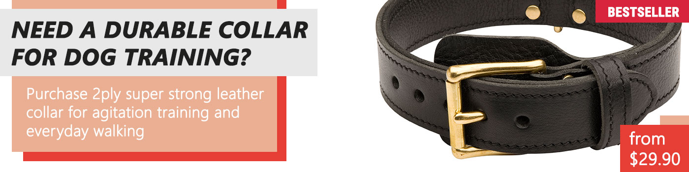 Leather Hardwearing Durable Dog Collar for Doberman