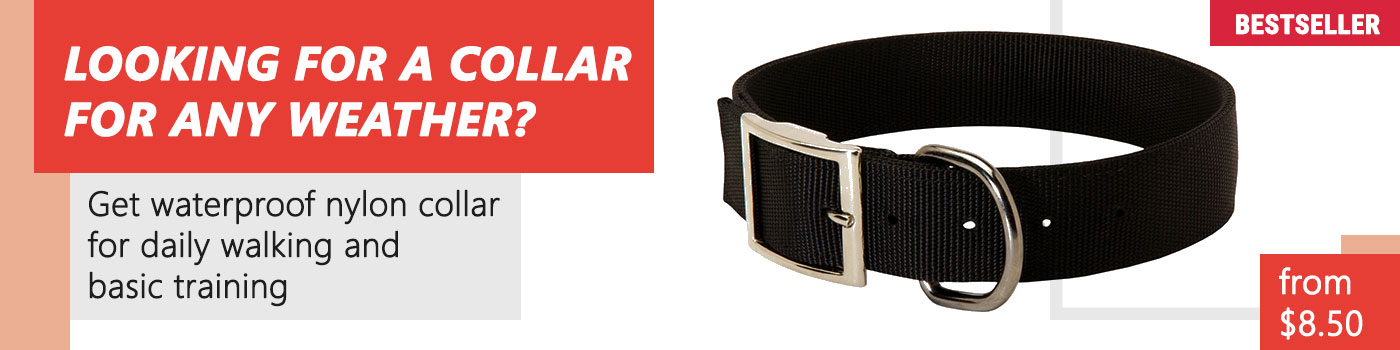 40 cm wide Nylon Dog Collar for Doberman - 18